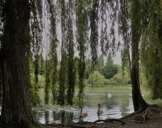 Castle Park4 – Aug 21